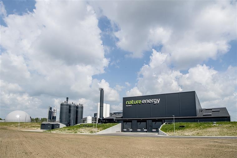 Imagem representativa da notícia: Efacec constrói maior central de biogás da Europa na Dinamarca - Infraestrutura vai alimentar rede de gás natural do país